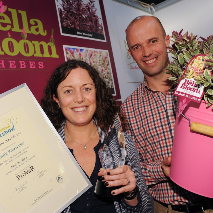 Hebe Rhubarb & Custard wins best new plant at the HTA awards 2012