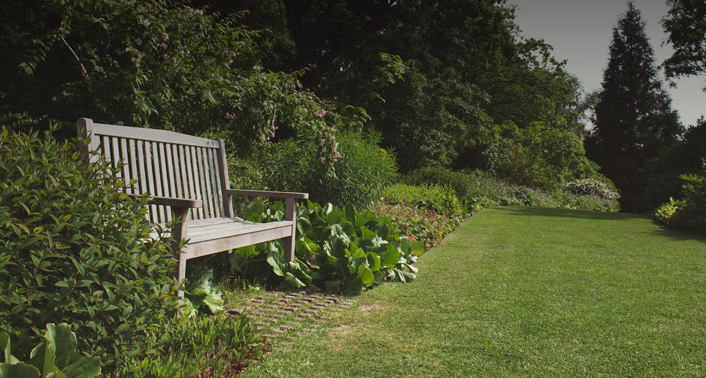 Tully Nurseries   Ireland's premier suppliers of plants